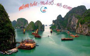 Tour Hà Nội – Móng Cái – Trà Cổ  – Hạ Long siêu rẻ chất lượng