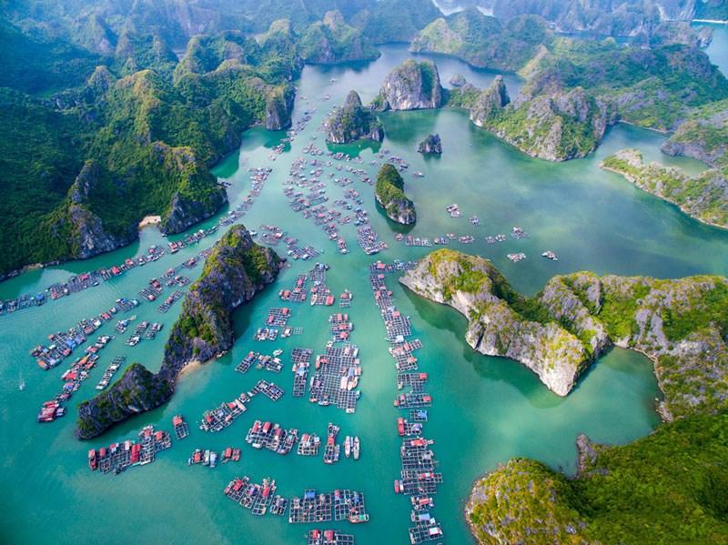 Tour Hạ Long – Tuần Châu – Cát Bà 4 ngày 3 đêm | giảm 50% khi đặt