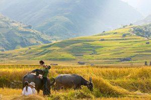 Kinh nghiệm du lịch Mai Châu từ A đến Z